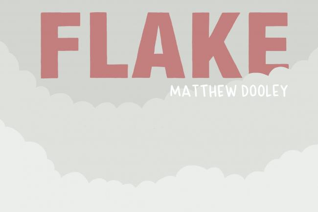 The cover of Flake by Matthew Dooley