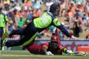 Can 'Cricket' the cricket predict World Cup results? It seems not